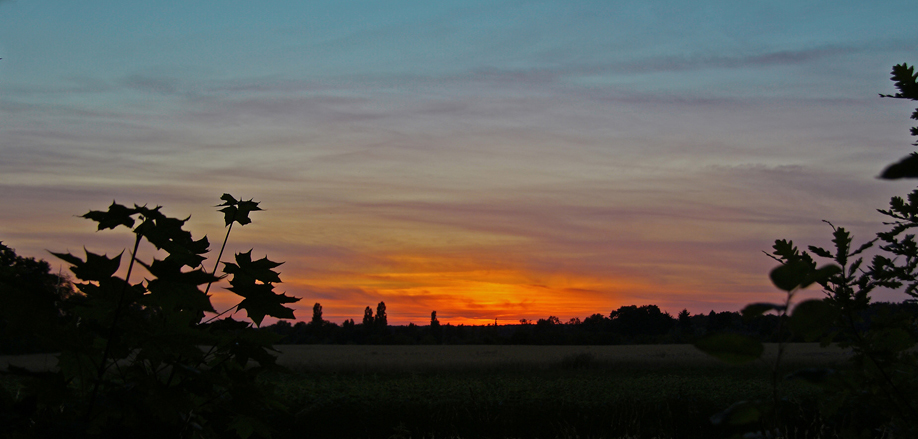 Sonnenuntergang hinter den Gatower Feldern, 30.06.08 – 01