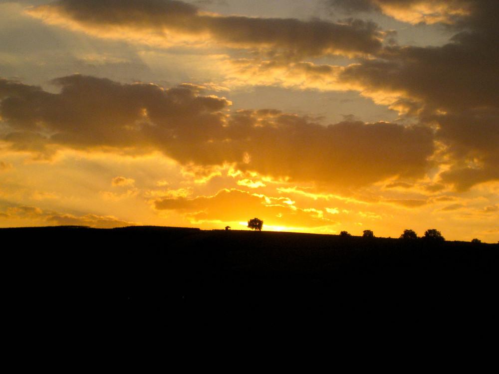 Sonnenuntergang hinter den Weinbergen