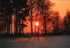 Sonnenuntergang i. Solling