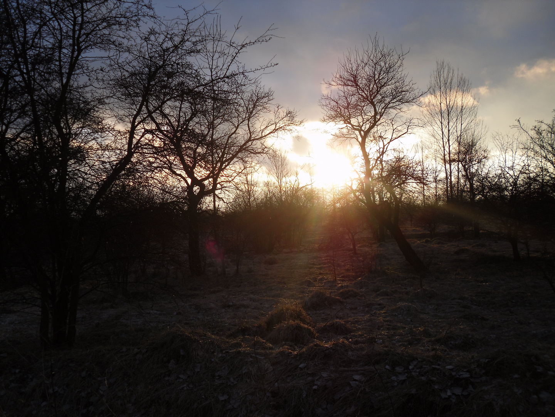 Sonnenuntergang im Alten Kasernengelände Gothas