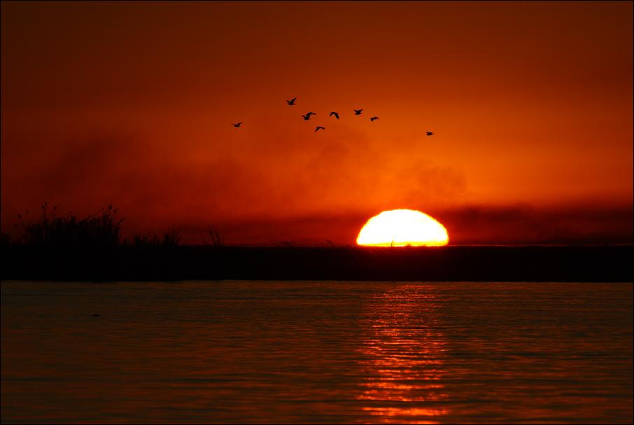 Sonnenuntergang im Caprivi