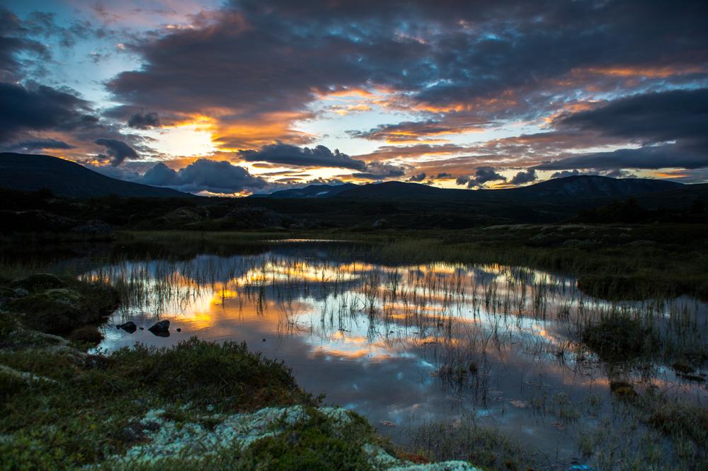 Sonnenuntergang im Dovrefjell