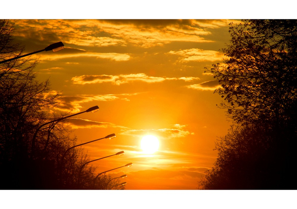 sonnenuntergang im frühling.