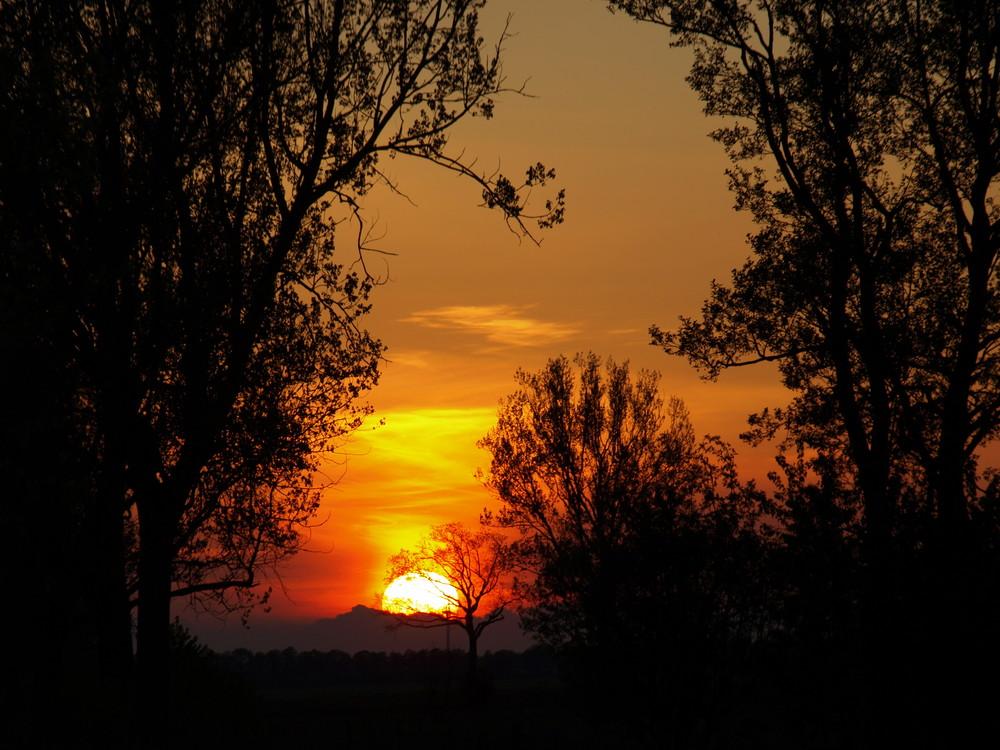 Sonnenuntergang im Herzen der Lewitz 3 (Mecklenburg-Vorpommern)