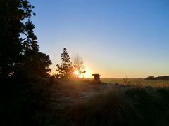 Sonnenuntergang im Küstenvorland