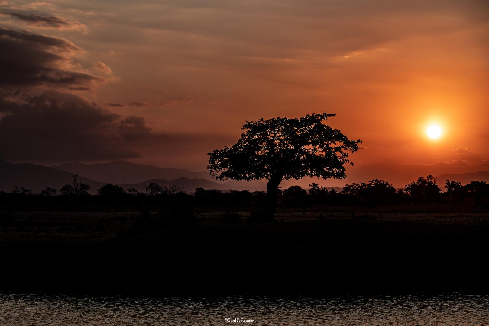 Sonnenuntergang im Mikumi Nat. Park/Tanzania