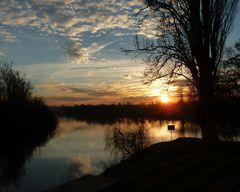 Sonnenuntergang im Neckar