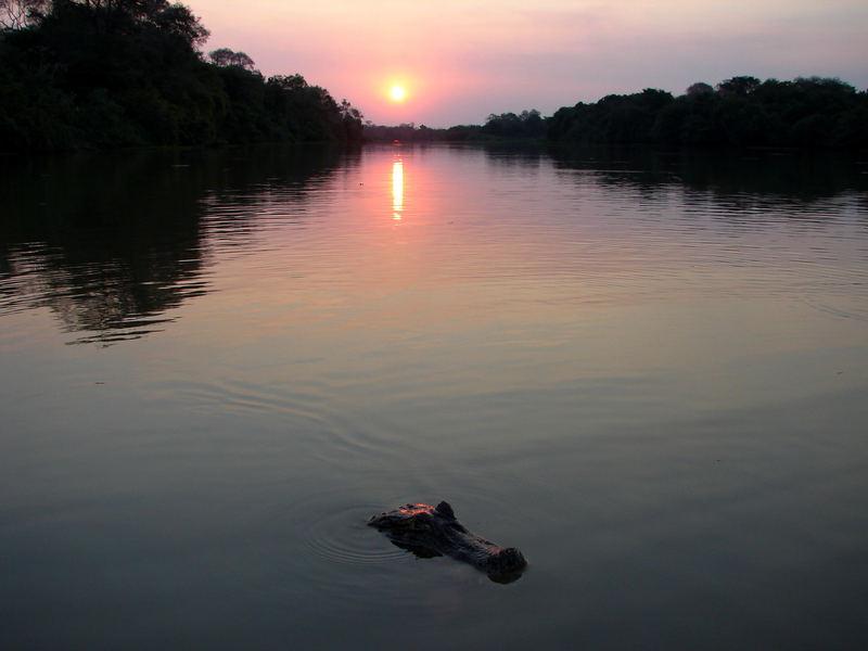 Sonnenuntergang im Pantanal