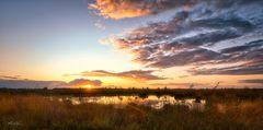 Sonnenuntergang im Rehdener Geestmoor