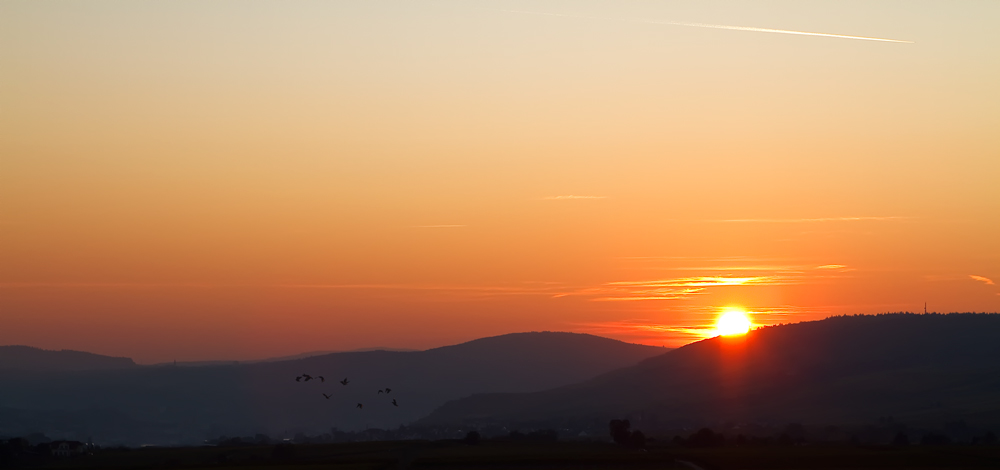 Sonnenuntergang im Rheingau