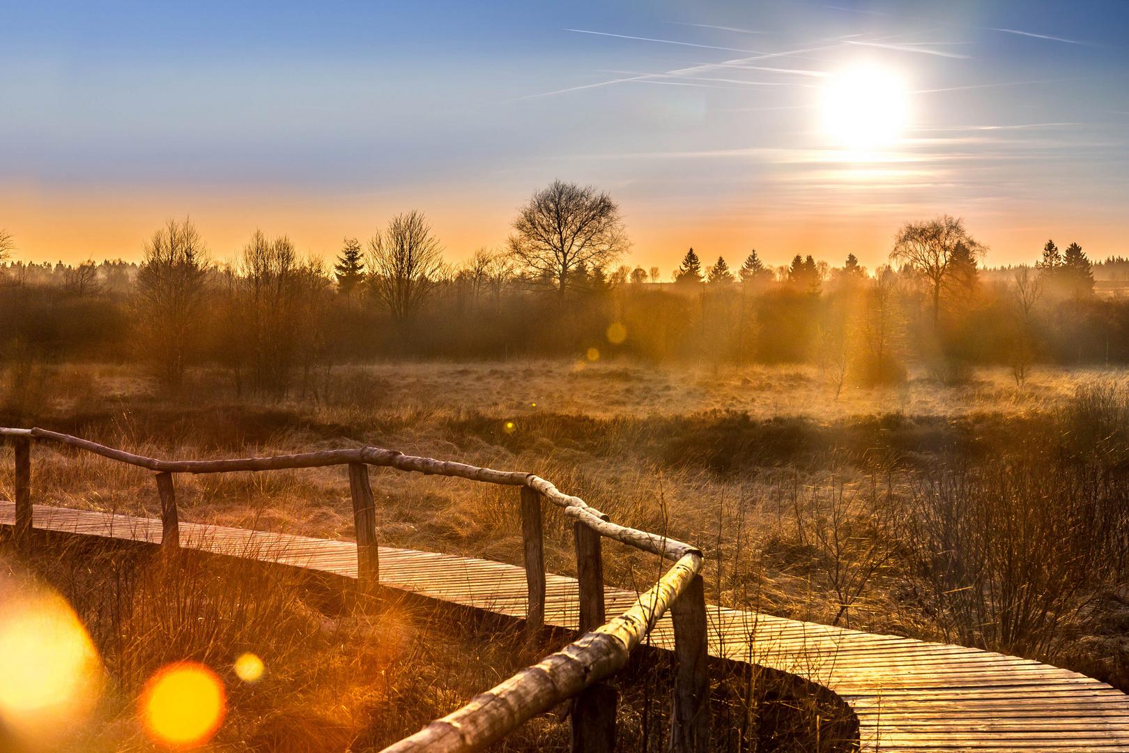 Sonnenuntergang im Venn.