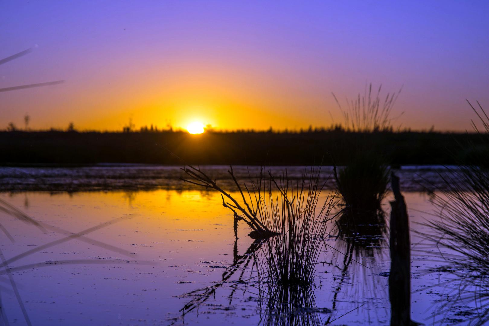Sonnenuntergang im Venn
