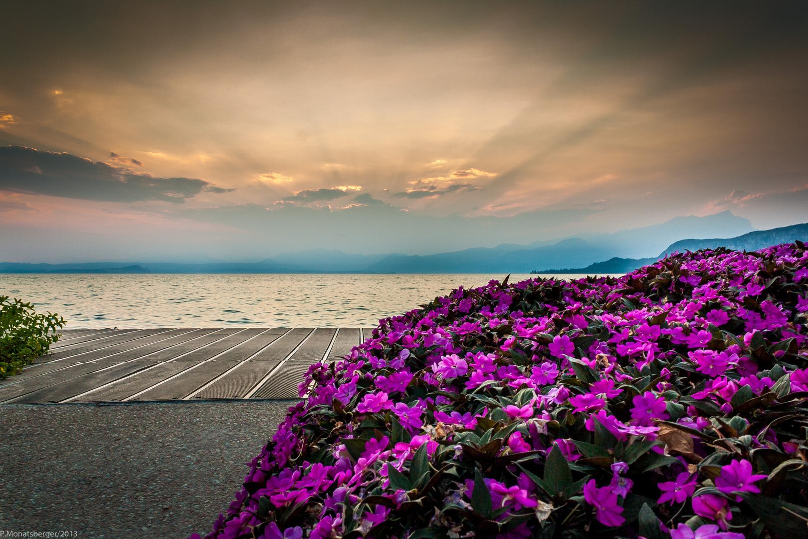 Sonnenuntergang in Bardolino - Italien