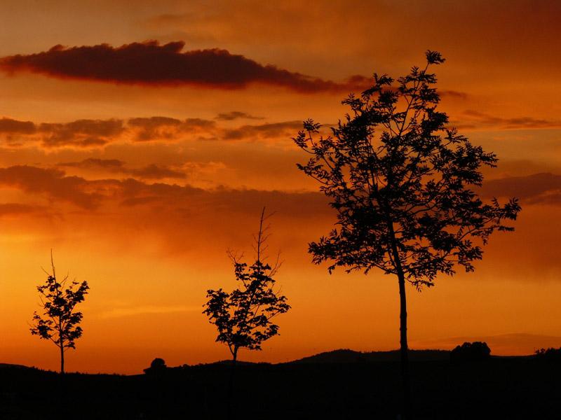 Sonnenuntergang in Bayern