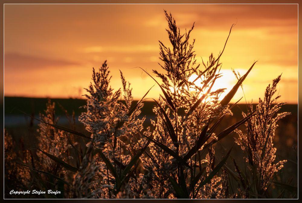Sonnenuntergang in Bensersiel 2