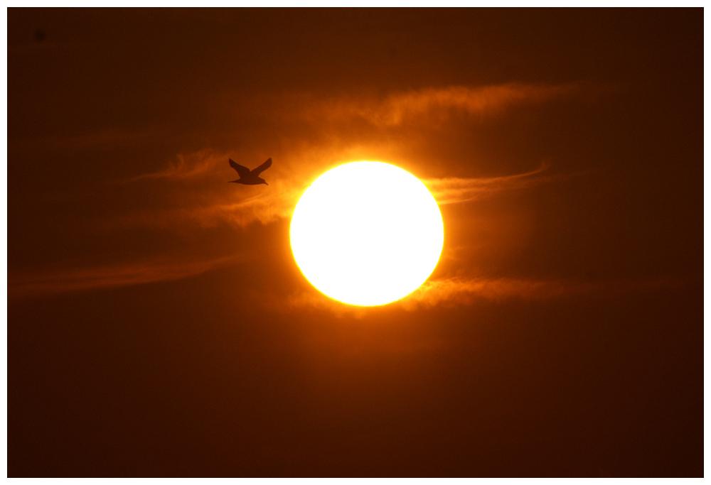Sonnenuntergang in Bostanci-Istanbul-Marmara Meer 2
