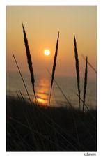 Sonnenuntergang in Cadzand... #1