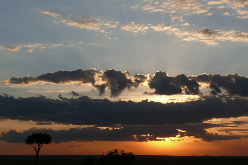 Sonnenuntergang in der Massai Mara (2)