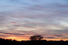 Sonnenuntergang in Dessau - Bild 13