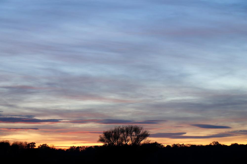Sonnenuntergang in Dessau - Bild 14