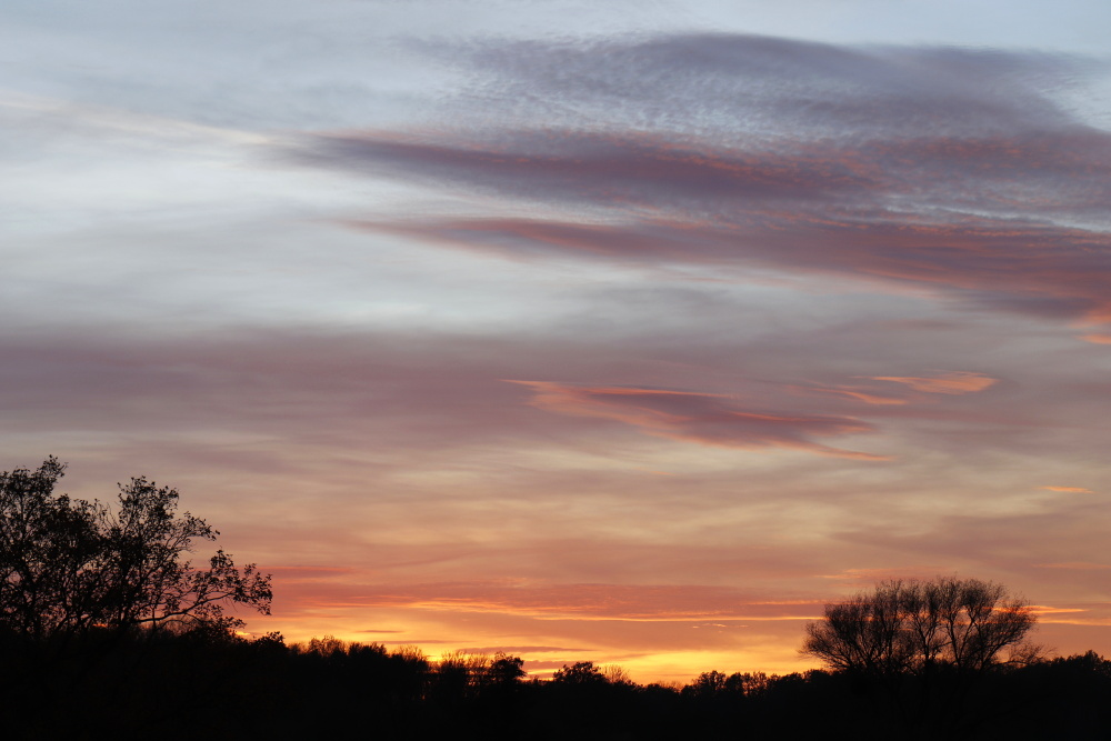 Sonnenuntergang in Dessau - Bild 3