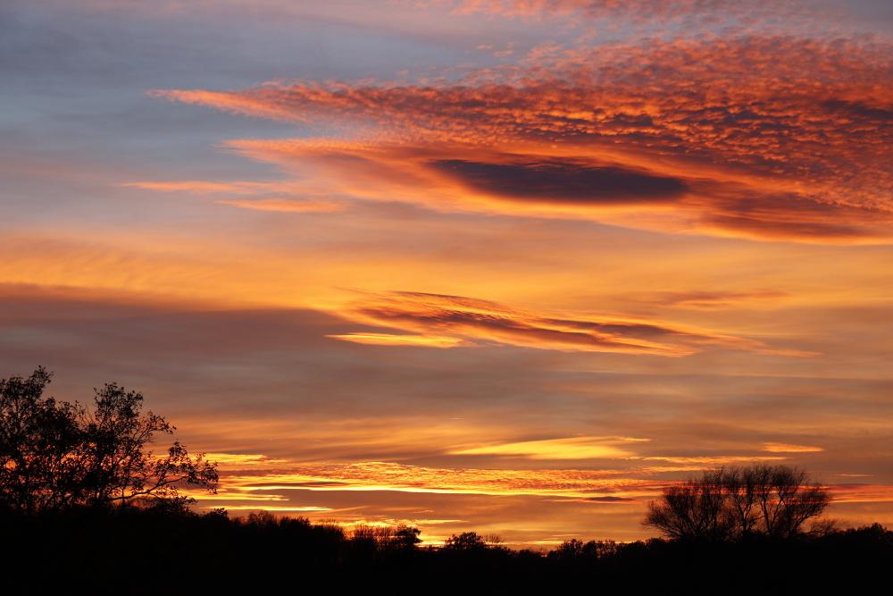 Sonnenuntergang in Dessau - Bild 6