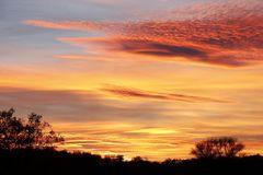 Sonnenuntergang in Dessau - Bild 7