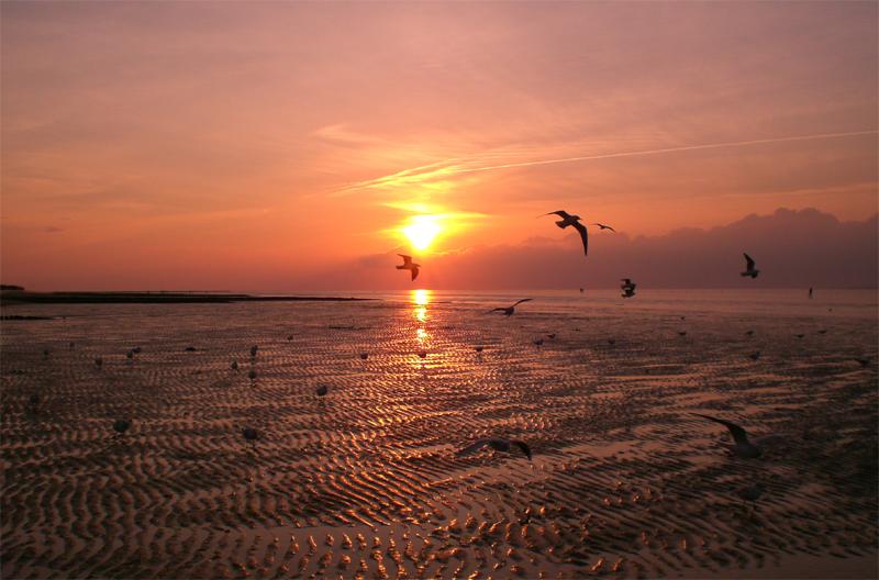 Sonnenuntergang in Duhnen 2007