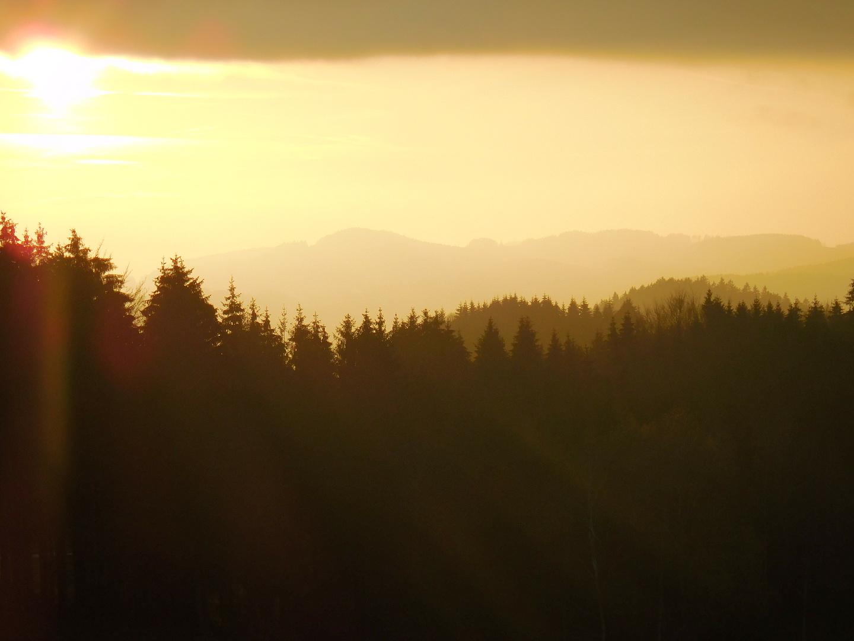 Sonnenuntergang in Gelb