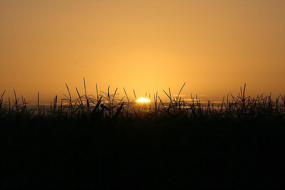Sonnenuntergang in Greetsiel