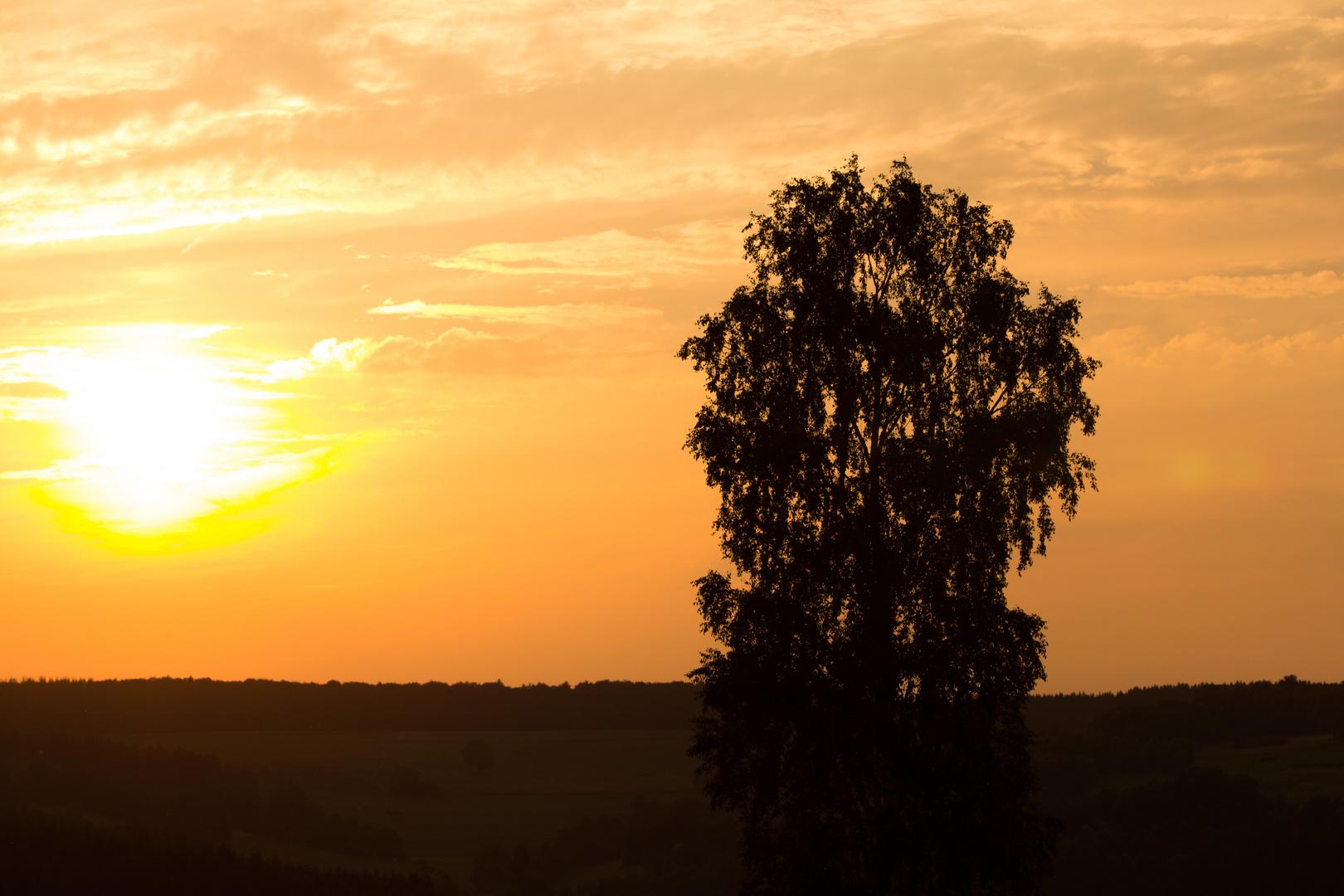 Sonnenuntergang in Lohrhaupten