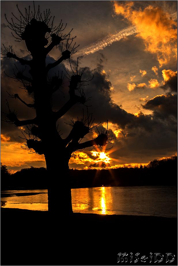 Sonnenuntergang in Moritzburg