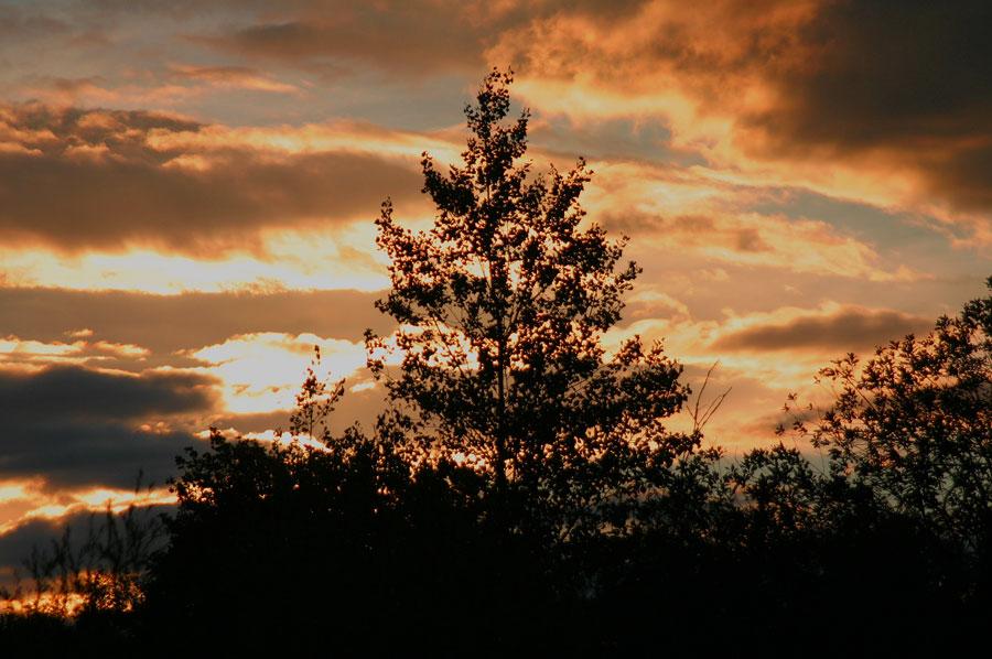 Sonnenuntergang in München / Langwied