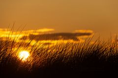 Sonnenuntergang in Noord-Holland (1)