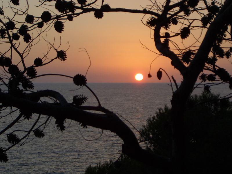 Sonnenuntergang in Paguera auf Mallorca