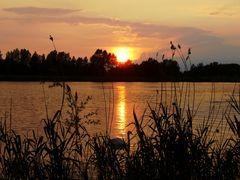 Sonnenuntergang in Prettin