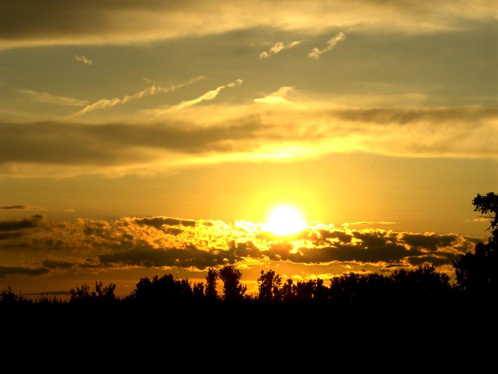 Sonnenuntergang in 'selbold