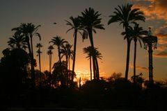 Sonnenuntergang in Sevilla