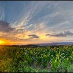 Sonnenuntergang in Südthüringen