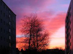Sonnenuntergang in unserer Straße