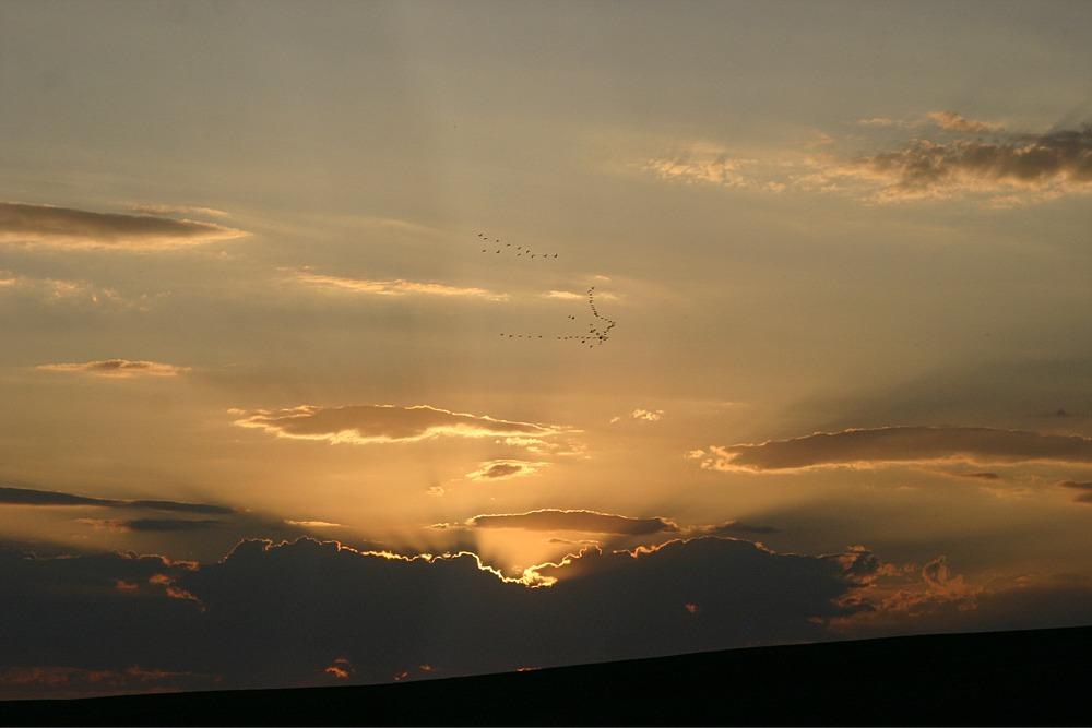 Sonnenuntergang mal ohne Meer