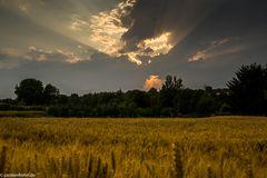 Sonnenuntergang mit Gewitter im Rücken