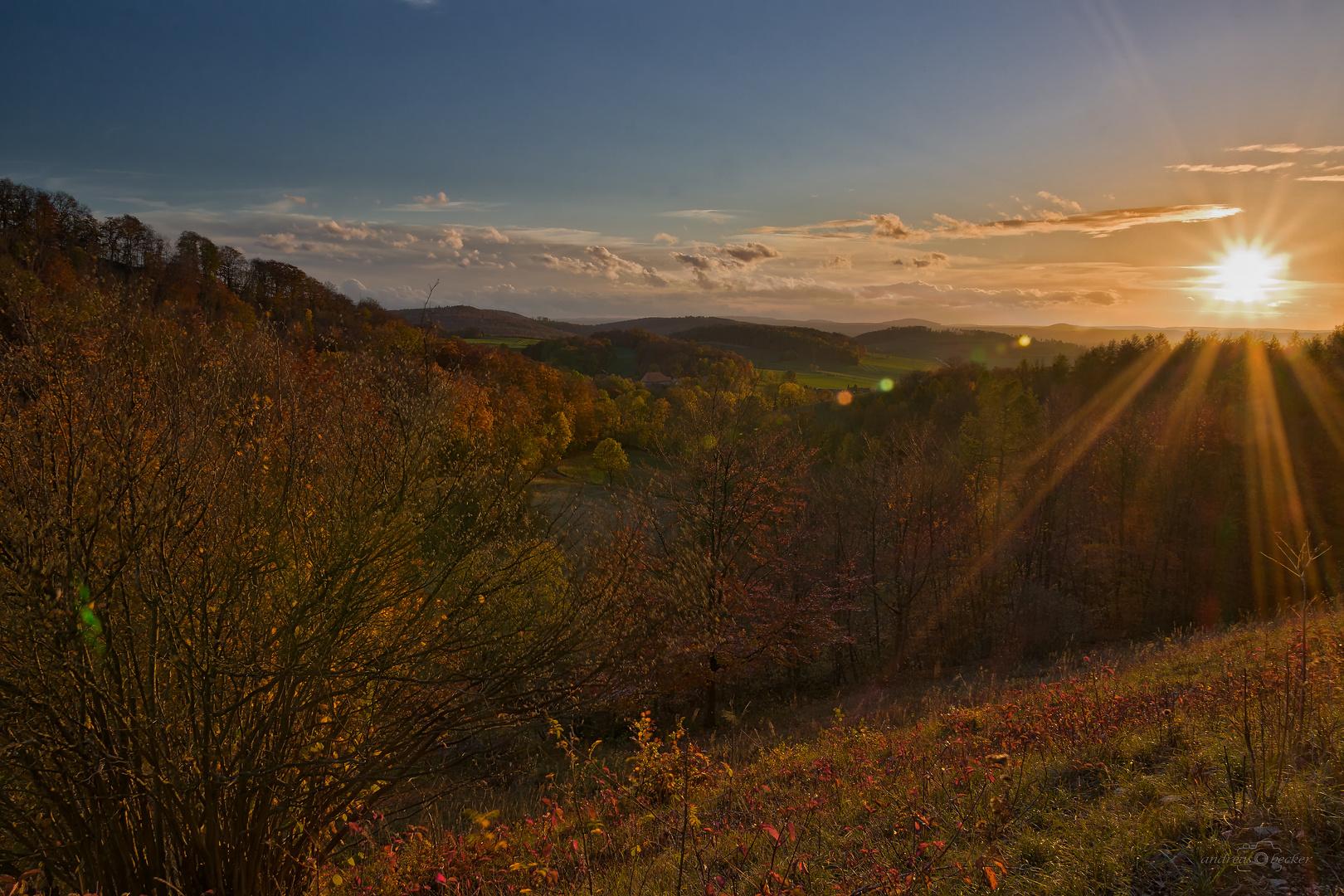 Sonnenuntergang mit Herbstlaub bei Bühle