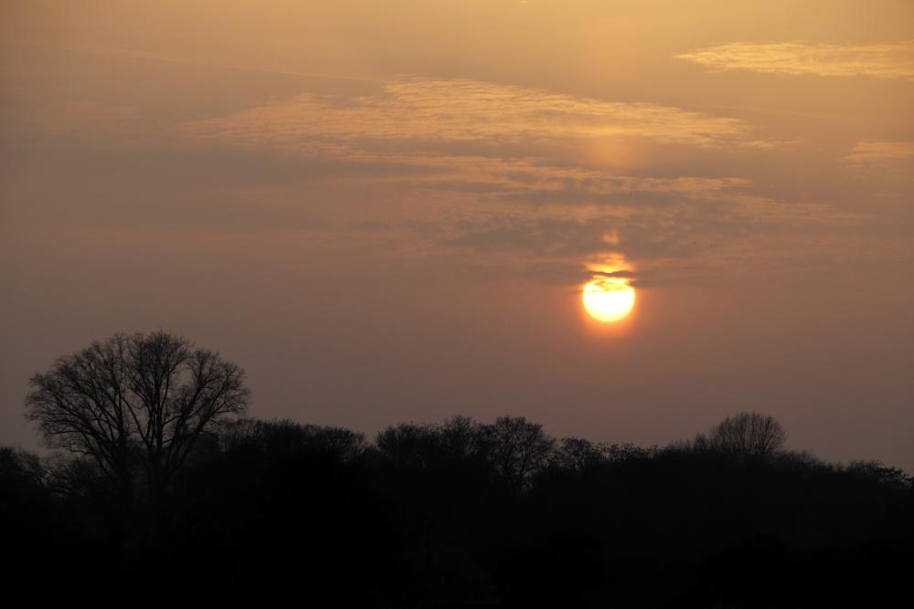 Sonnenuntergang mit Saharastaub - Bild 3