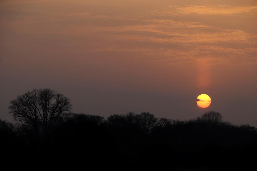 Sonnenuntergang mit Saharastaub - Bild 4