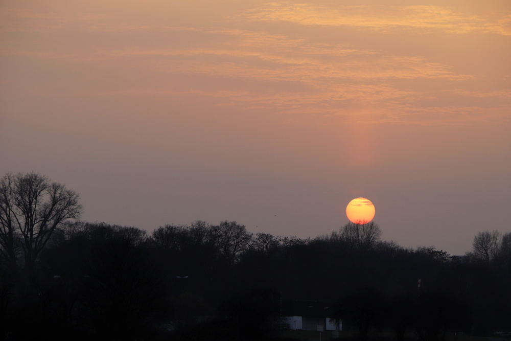 Sonnenuntergang mit Saharastaub - Bild 5