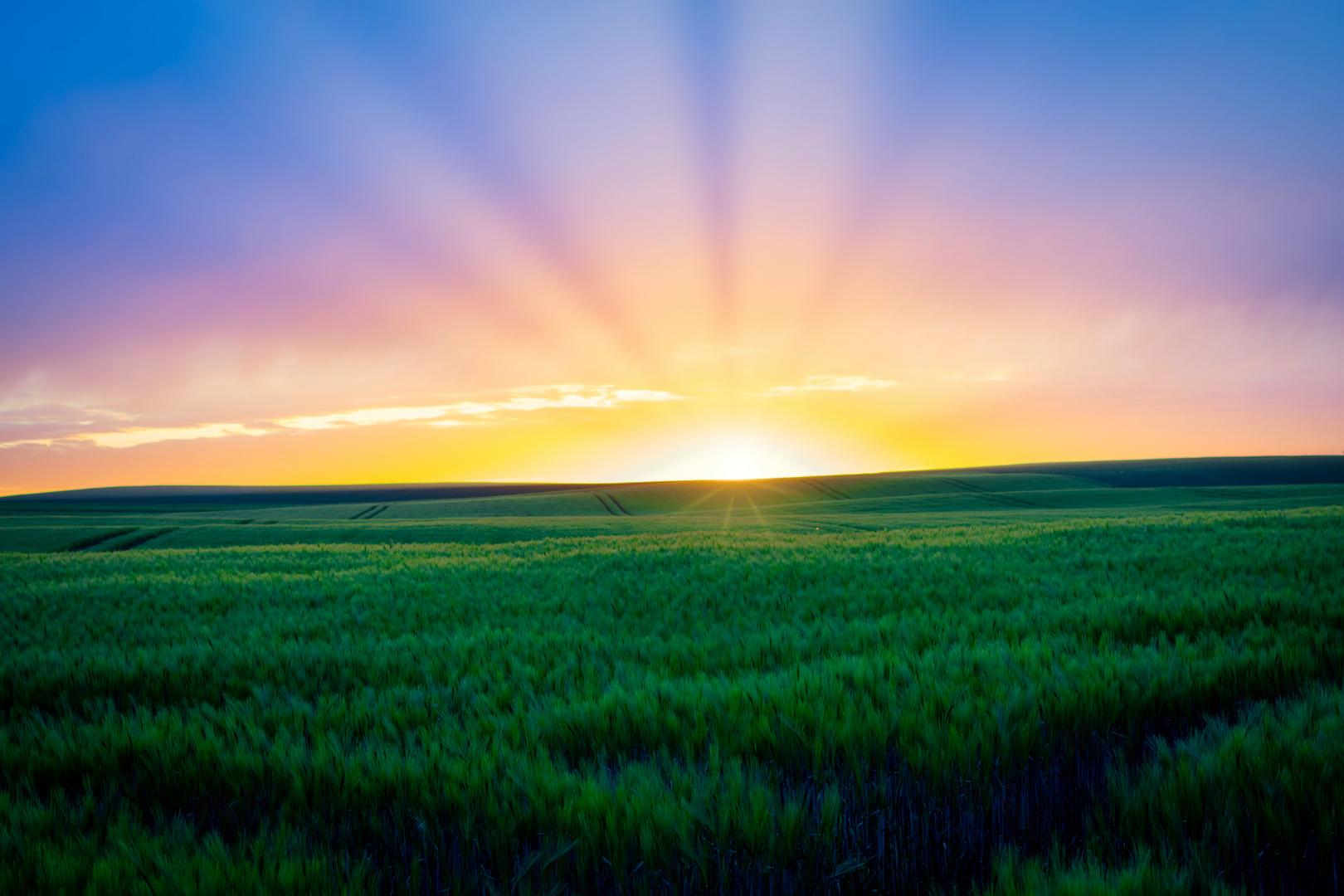 Wetter Sonnenuntergang