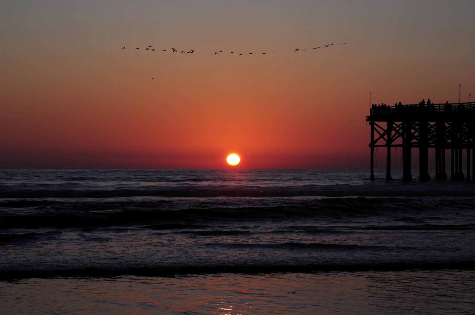 Sonnenuntergang mit Zugvögeln