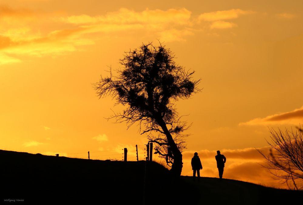 Sonnenuntergang pur