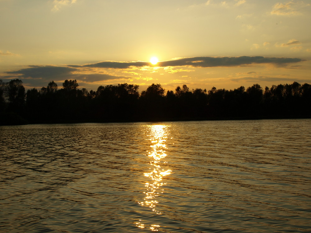 Sonnenuntergang Rhein